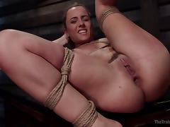helpless roxanne gets bonded and fucked