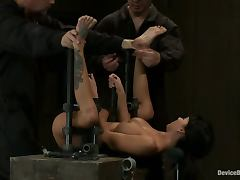 Busty Gia DiMarco Gets Fucked while Bounded in Bondage Video