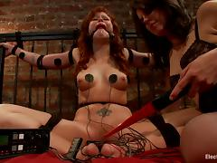 Shocking BDSM session with a lusty siren Bobbi Starr and her slave Brooklyn